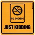 Zvětšit fotografii - No smoking - Just kidding