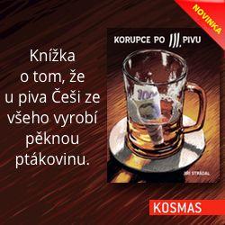 Korupce po 3. pivu, Jiří Strádal